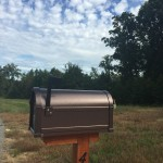 Extraordinary Everyday: Mail