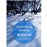 Extraordinary Everyday: Snow