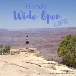 Hands Wide Open Life