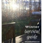 My Winter Survival Guide 2017
